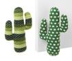 Opritor de usa Cactus Altair