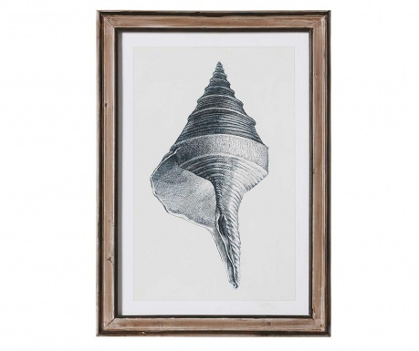Obraz Shell Point 50x70 cm