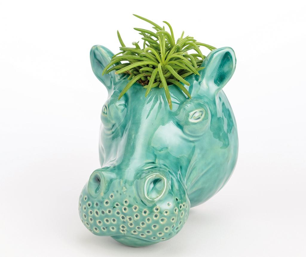 Ghiveci Hippo Face