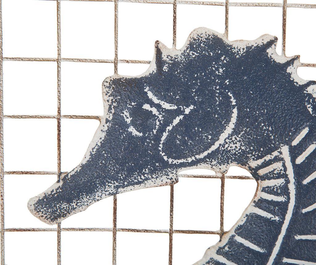 Seahorse Marino Falióra
