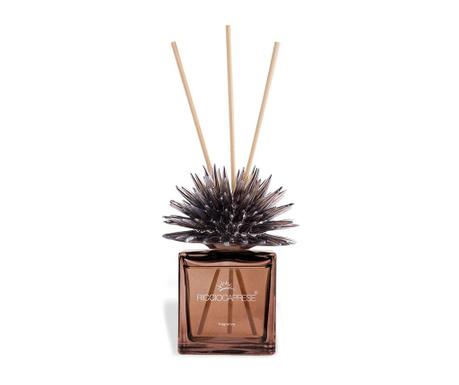 Pokojový parfémový difuzér a tyčinky Riccio Bronze Femminello 100 ml