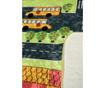 School Ride Szőnyeg 100x160 cm