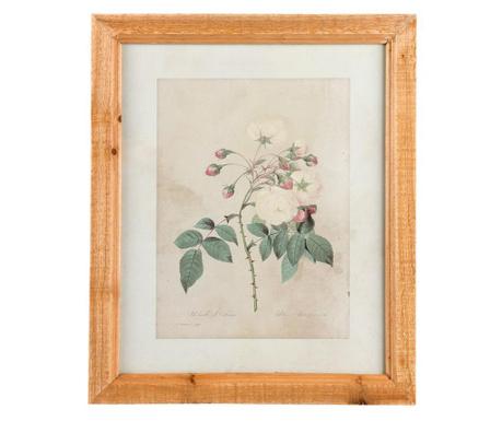 Rose Kép 33x40 cm