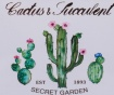 Cvetlično korito Succulent