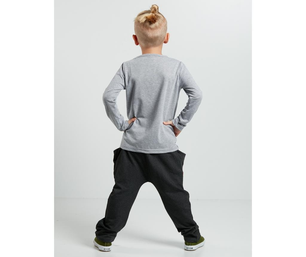 Set bluza si pantaloni Alligator 2 years