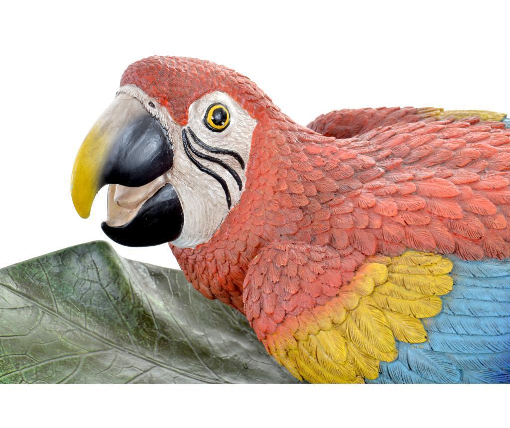 Ukrasni pladanj Parrot
