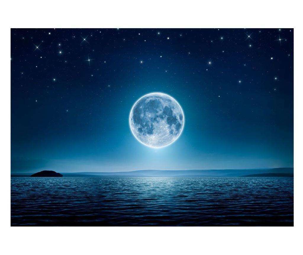Moonlit Night Fotótapéta 245x350 cm