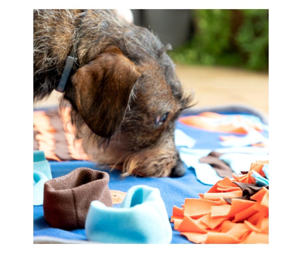 Covor de joaca pentru animalele de companie Foofield 50x75 cm